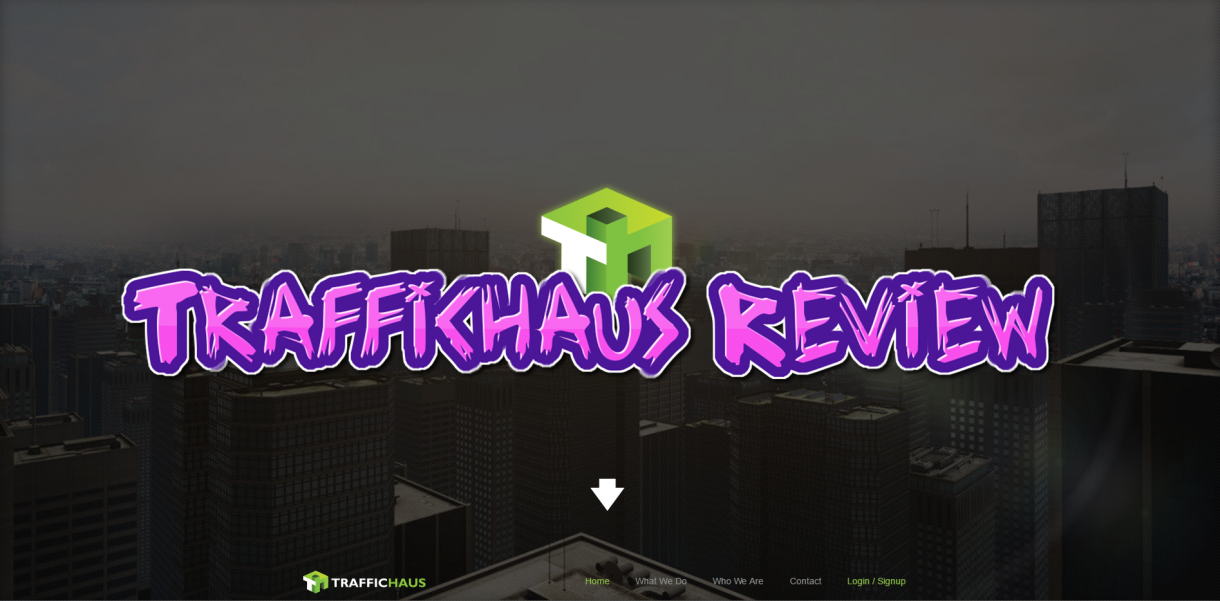 traffichaus-review